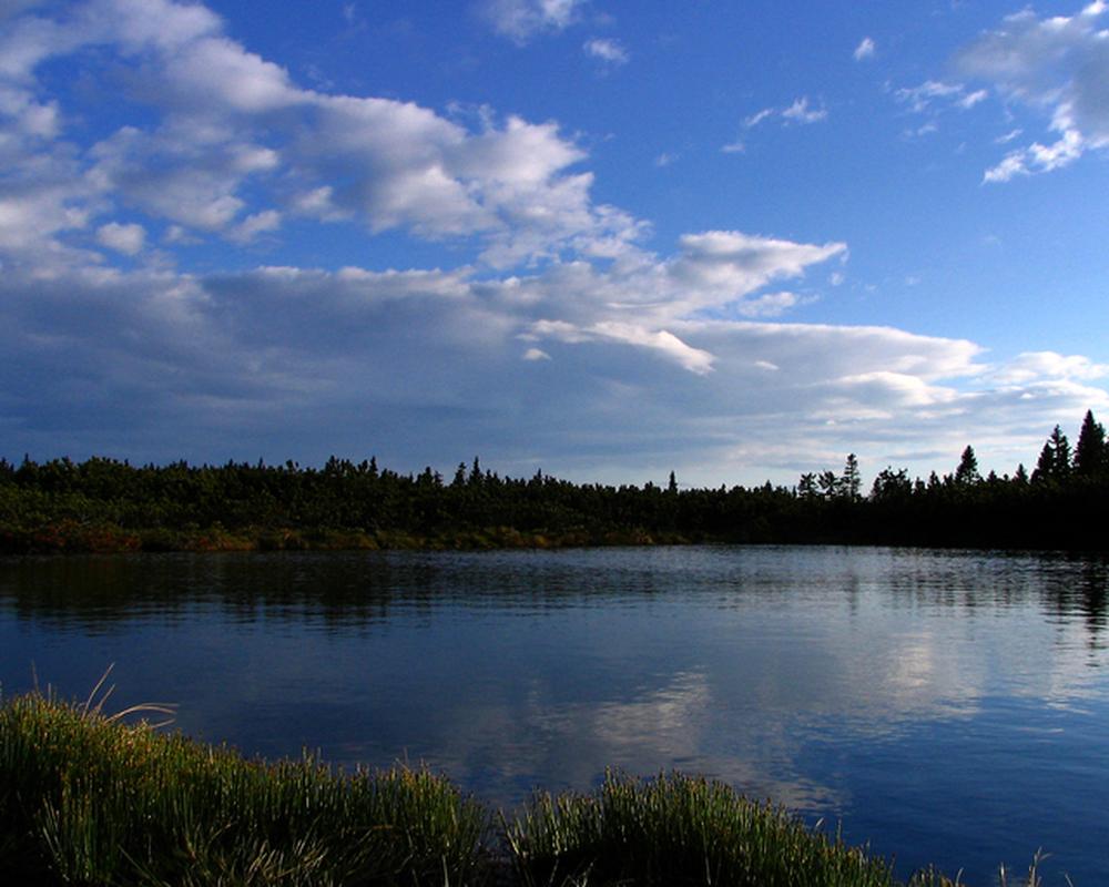 Bidra til å bevare naturen ved å velge miljøvennlig strøm